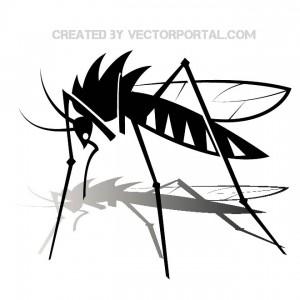 mosquito_vector_vectorportal_10328