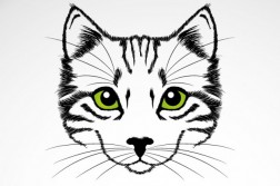 green-eyes-cat-vector-art_23-2147493584