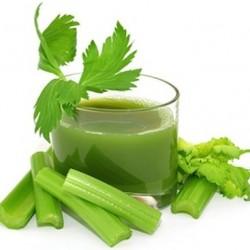 celery-juice1